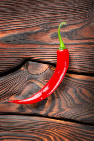 Red chili pepper photo