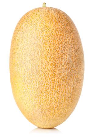 マスクメロン: Cantaloupe