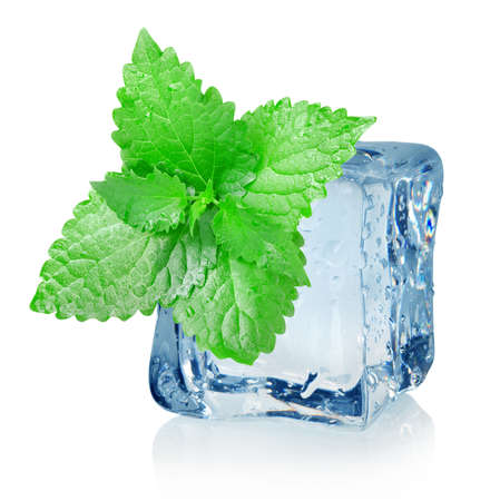 ice cube: Ice cube and mint Stock Photo