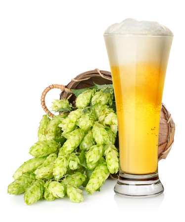 Light beer and hop in basket