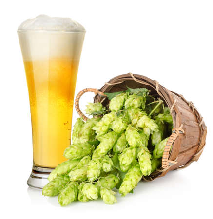 Beer and hop in basket photo