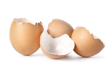 shell: Brown eggs Stock Photo