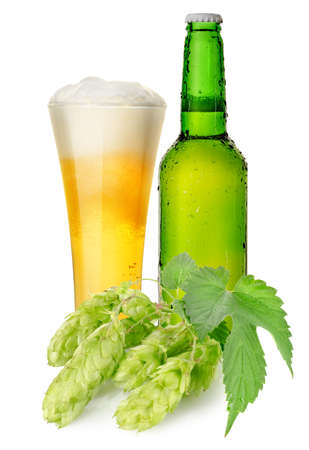Beer and hops photo