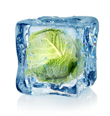 Ice cube and savoy cabbage photo