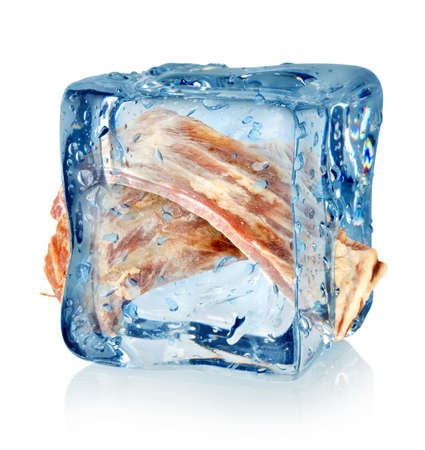 Frozen meat: Ice cube and ribs
