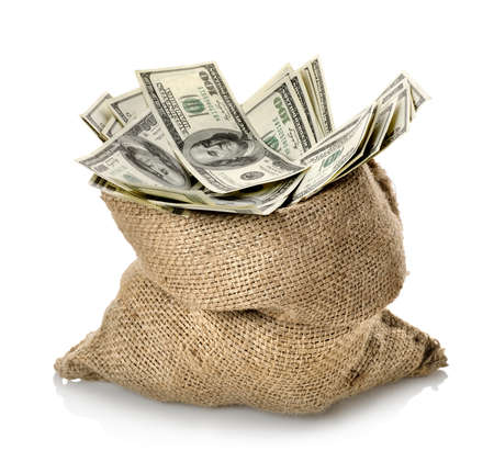 pile of money: Dollar in the bag