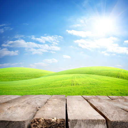 sunny sky: Table and field