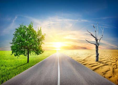 自然に地球温暖化の効果 写真素材