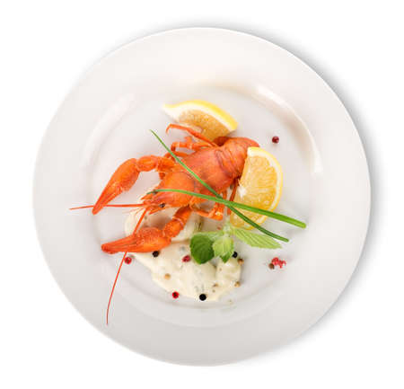 Lobster on a white plate isolated on a white background photo