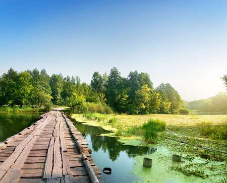 duckweed: Bridge over a swampy river on sunrise