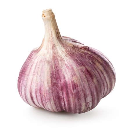 白い背景上に分離されて紫色のニンニク