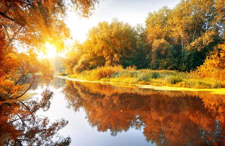 Río en un bosque encantador de otoño en un día soleado Foto de archivo