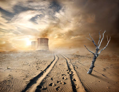 barren land: Industrial pipes and dry tree in desert