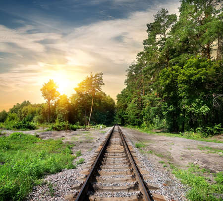 forest railroad: Railroad through the forest at the sunset Stock Photo