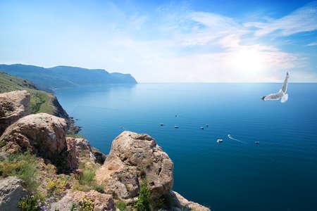 horison: White gull flying over the Black Sea