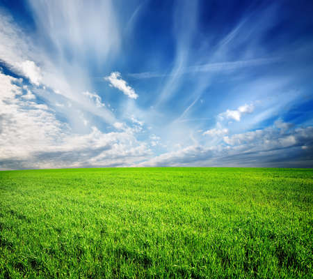 green field: Green field and blue sky lit by the sun Stock Photo