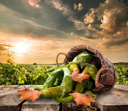 capsicums: Pepper in a basket on table and landscape