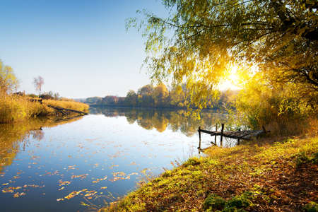 Calm river and autumn forest at sunrise photo