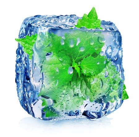 アイス キューブは、白で隔離されるのミントします。 写真素材