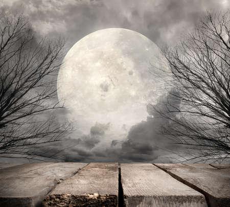 paisaje: Bosque fantasmagórico con luna llena. Los elementos de esta imagen proporcionada por la NASA