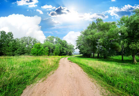 beauty in nature: Country road and green trees at sunny day