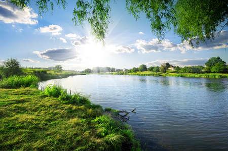 sol: Dia ensolarado em um rio calmo no verão Imagens