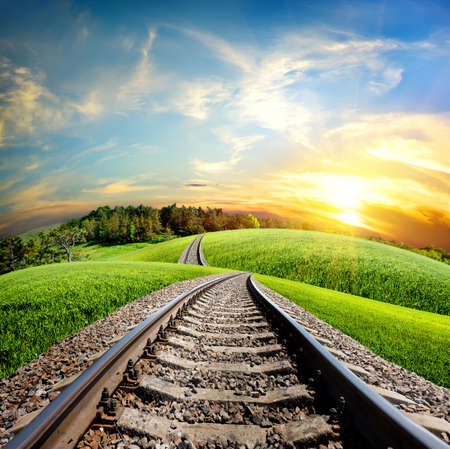 forest railroad: Railroad through the green field and forest