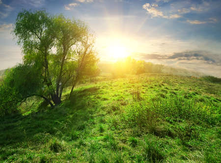 over hill: Bright sun over hill with green grass