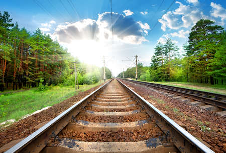 forest railroad: Railroad through the green pine forest close-up Stock Photo