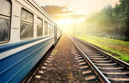 estacion de tren: Tren que se mueve a través del bosque de pinos en la puesta del sol