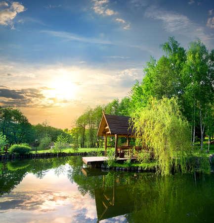 夕暮れの池の近くの白樺の待合