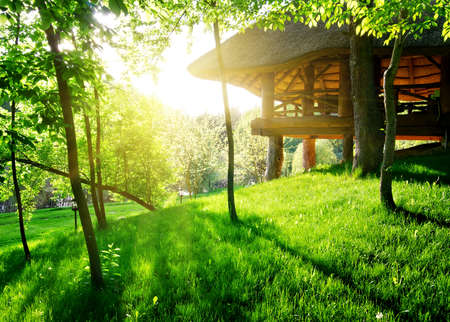 Gazebo among the green trees in sunny day