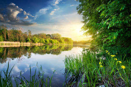 Spring river and green forest at sunset photo