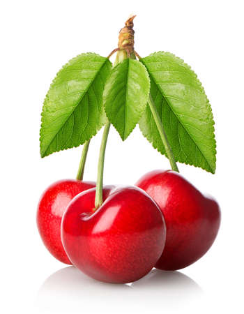 pulpy: Three red cherries with leaves isolated on white