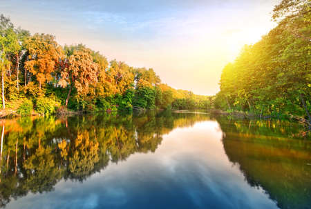 green park: Pink sunrise over calm river in the forest