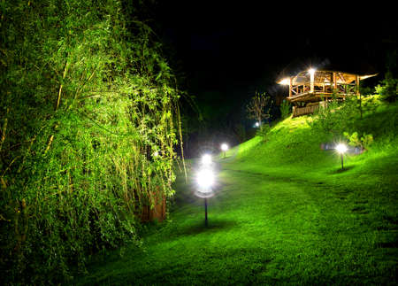 osier: Wooden arbour and green osier at night