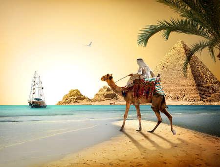 Bedouin op kameel dichtbij piramides en de zee