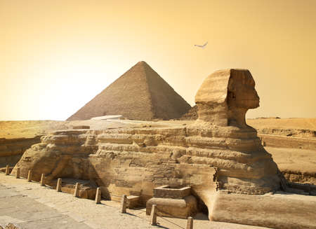 Bird over sphinx and pyramid in egyptian desert