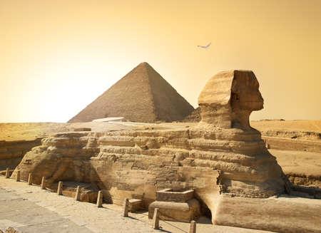 Vogel over sphinx en piramide in Egyptische woestijn Stockfoto - 44378609