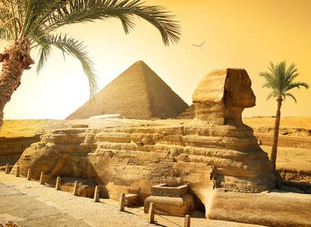 Palmen in de buurt van sphinx en piramide in Egyptische woestijn