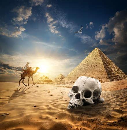 Skull near pyramids in sand desert at sunrise Banco de Imagens