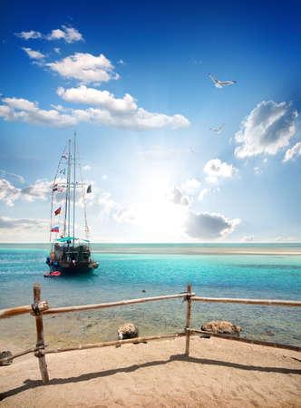 voilier ancien: Oiseaux sur voilier près de la plage de sable
