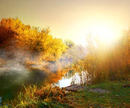 秋の森の川の霧 写真素材 - 46494349