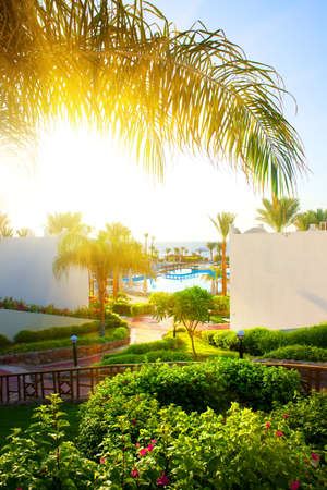 fense: Beautiful landscape in the hotel of Egypt