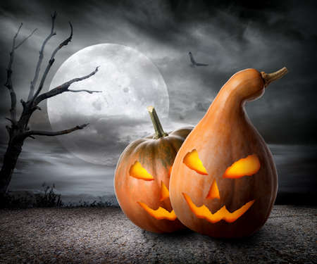 fool moon: Angry pumpkins under fool moon. Elements of this image furnished by NASA
