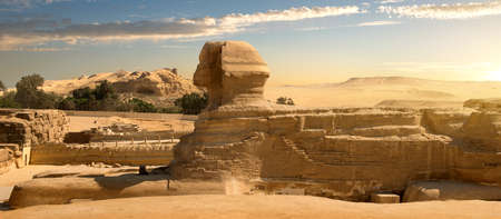Sphinx in sand desert at the sunset