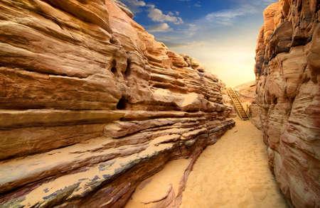 yellow earth: Sandy canyon in desert of Sinai at sunset Stock Photo
