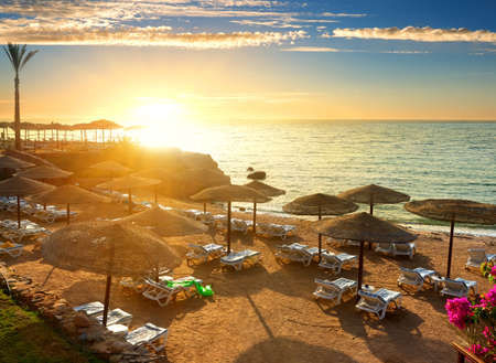 sea resort: Red sea beach with parasols at sunset