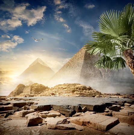 Mist rond piramides in de woestijn bij zonsopgang Stockfoto
