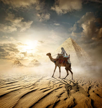 Bedouin on camel near pyramids in fog Stock Photo